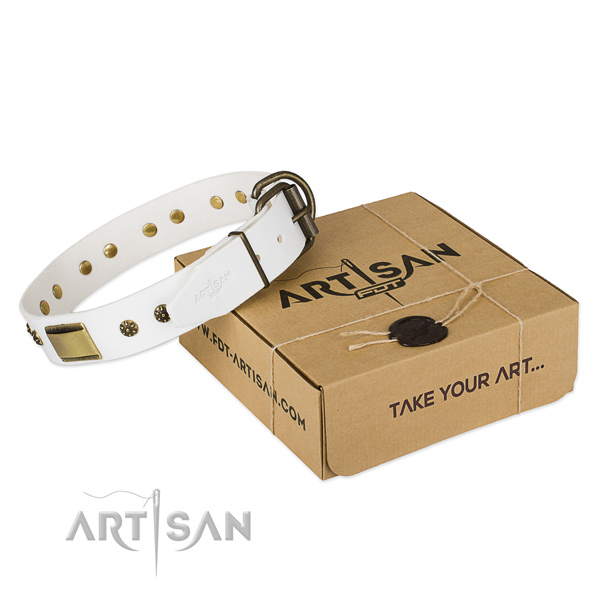 Impressive natural genuine leather collar for your impressive canine