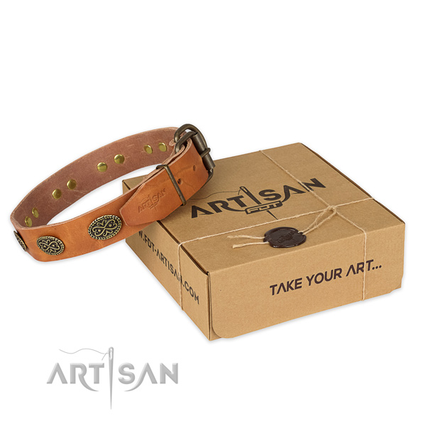 Rust-proof buckle on natural genuine leather collar for your beautiful doggie