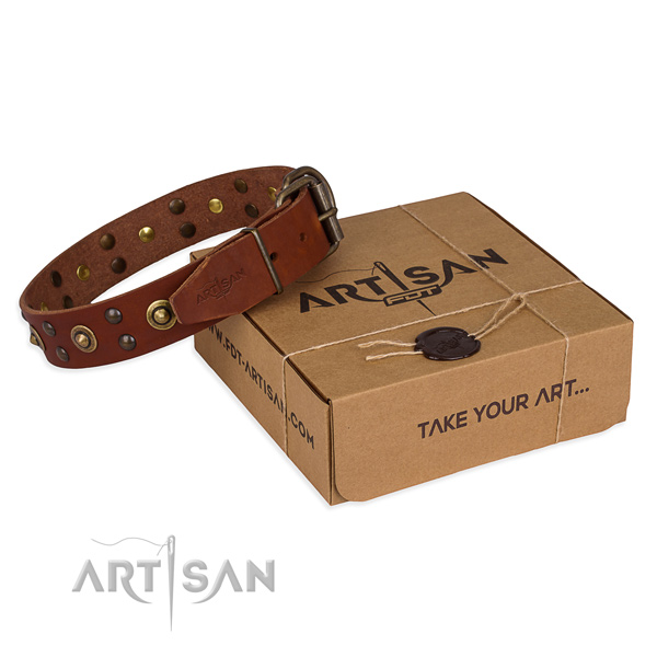 Reliable hardware on leather collar for your impressive doggie