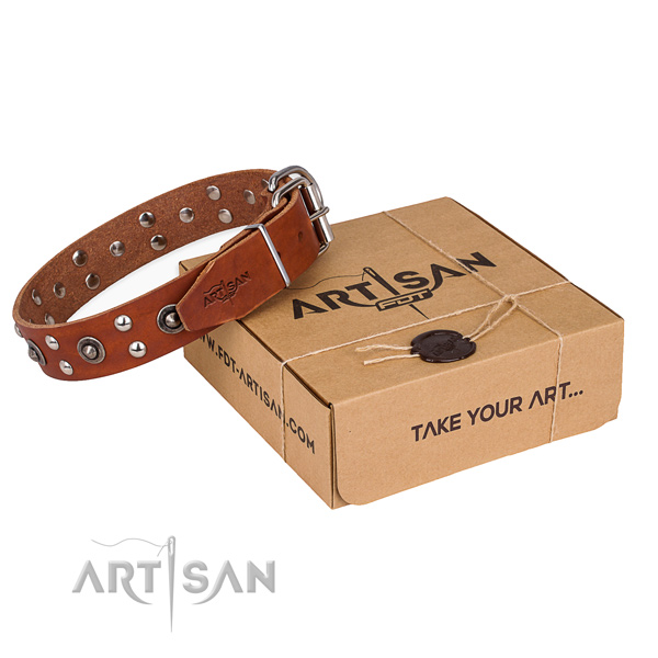 Strong buckle on genuine leather collar for your handsome canine