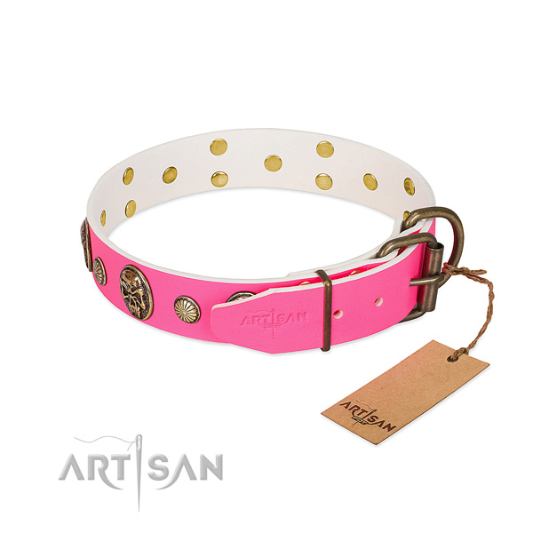 Reliable fittings on leather dog collar for your dog