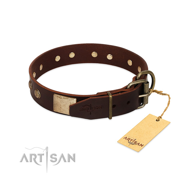 Corrosion proof traditional buckle on daily walking dog collar