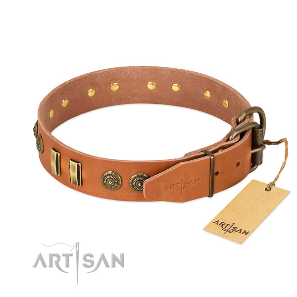 Strong adornments on leather dog collar for your canine