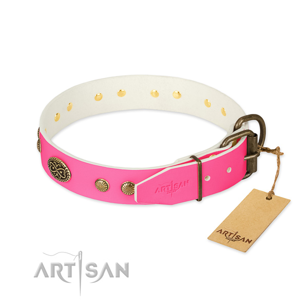 Corrosion proof embellishments on full grain natural leather dog collar for your canine