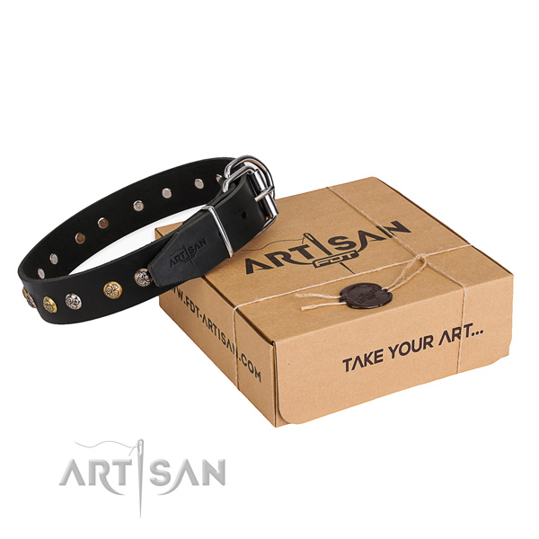 High quality leather dog collar handmade for stylish walking