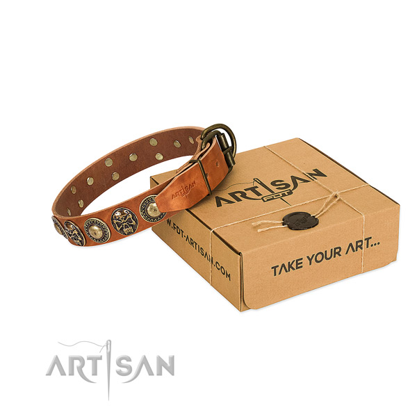 Rust-proof adornments on dog collar for daily use