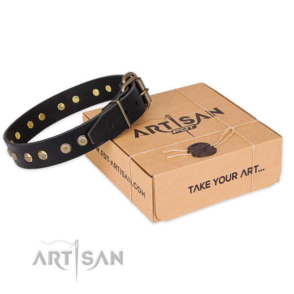 Rust resistant fittings on full grain natural leather collar for your attractive four-legged friend
