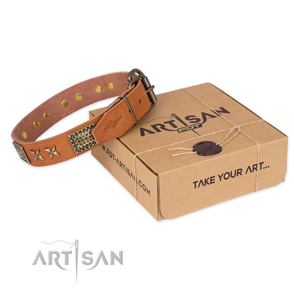 Rust resistant fittings on leather collar for your beautiful doggie
