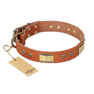 """Enchanting Spectacle"" FDT Artisan Tan Leather Siberian Husky Collar with Old Bronze Look Plates and Round Studs"
