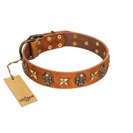 """Rockin' Doggie"" FDT Artisan Tan Leather Siberian Husky Collar Adorned with Stars and Skulls"