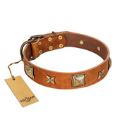 """Celtic Tunes"" FDT Artisan Tan Leather Siberian Husky Collar Adorned with Stars and Squares"