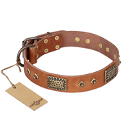 """Catchy Look"" FDT Artisan Decorated Tan Leather Siberian Husky Collar"