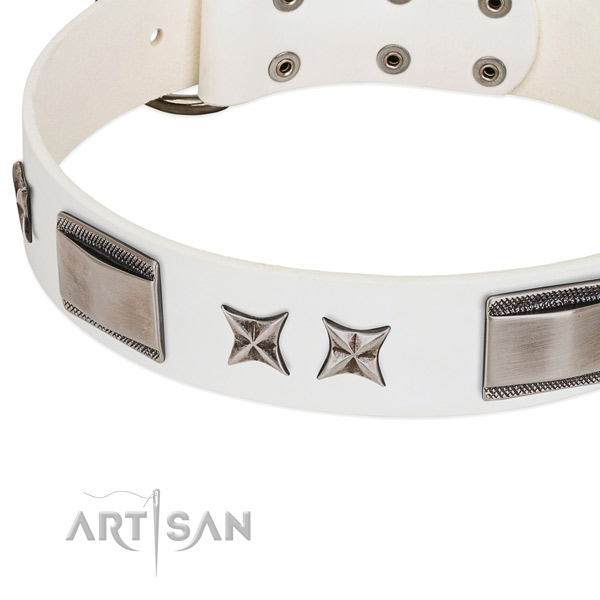 High quality genuine leather dog collar with corrosion proof fittings