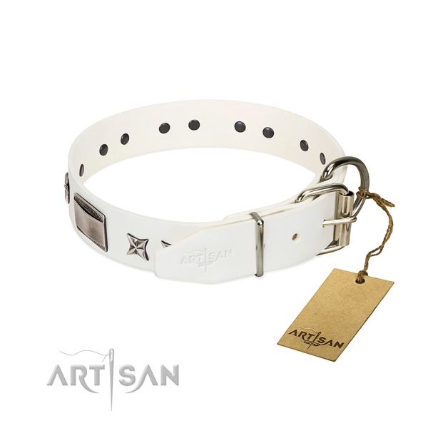 Stylish collar of natural leather for your beautiful canine
