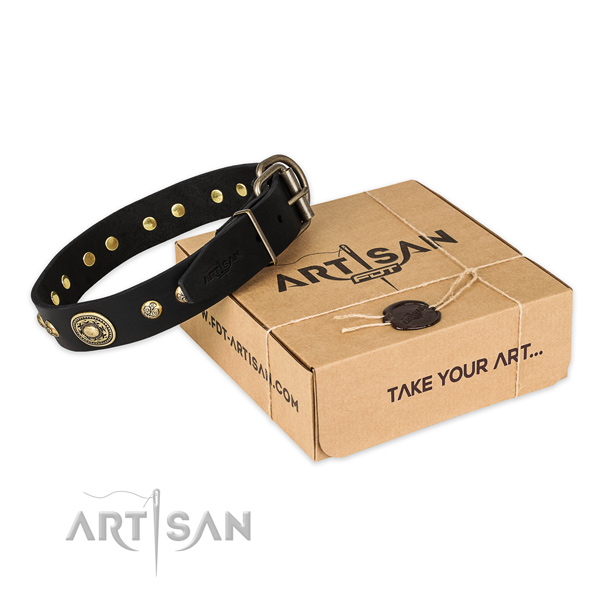 Strong traditional buckle on full grain leather dog collar for stylish walking