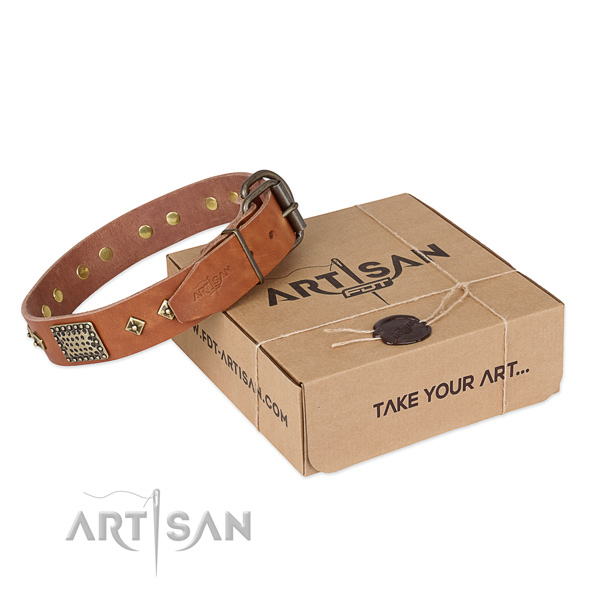 Significant genuine leather collar for your lovely doggie