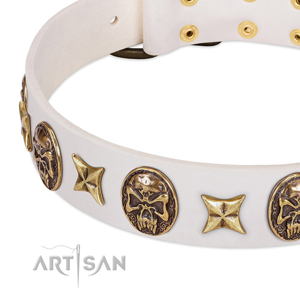 Handcrafted dog collar crafted for your stylish pet