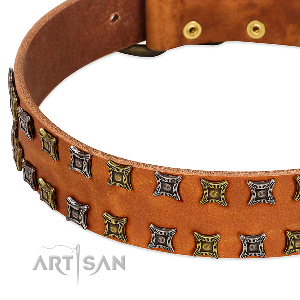Best quality full grain genuine leather dog collar for your beautiful pet