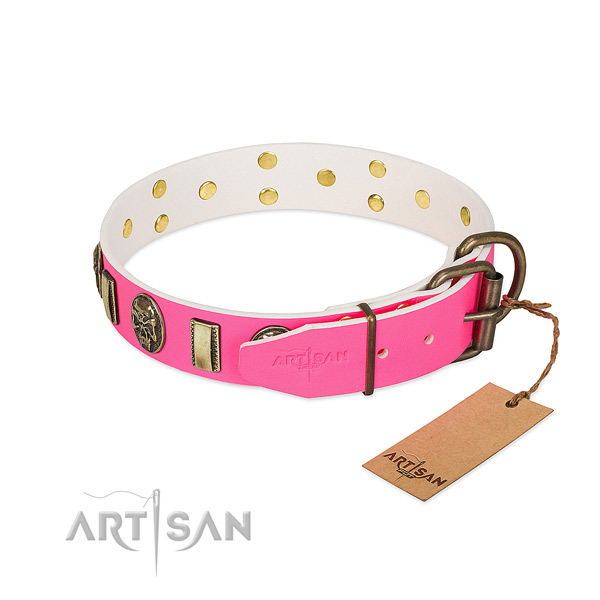 Durable traditional buckle on natural genuine leather dog collar for your pet