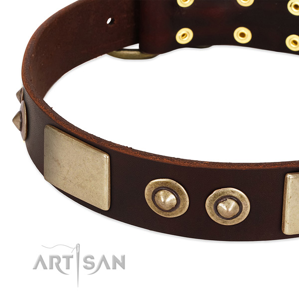 Durable studs on leather dog collar for your four-legged friend