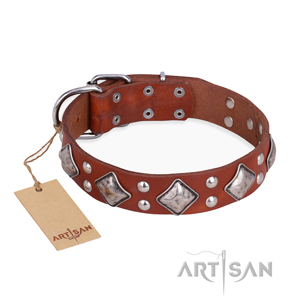 Comfortable wearing exceptional dog collar with rust-proof buckle