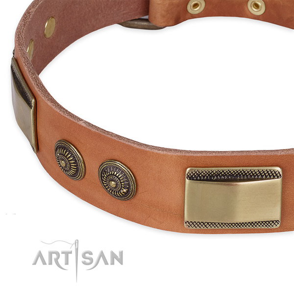 Significant full grain natural leather collar for your attractive canine