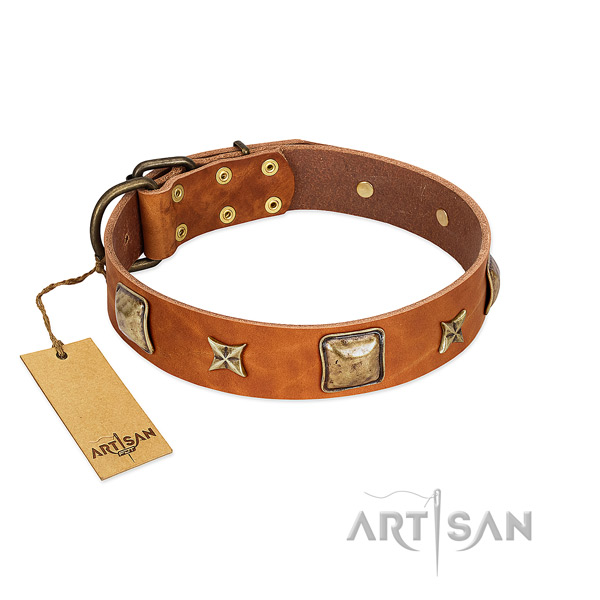 Exquisite full grain natural leather collar for your four-legged friend