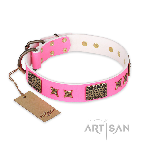 Easy adjustable full grain leather dog collar with strong fittings