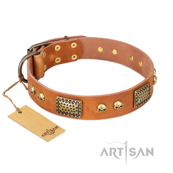 Adjustable full grain genuine leather dog collar for daily walking your pet
