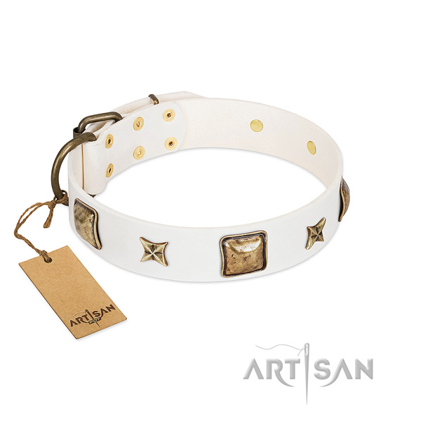 Fine quality full grain leather dog collar for fancy walking