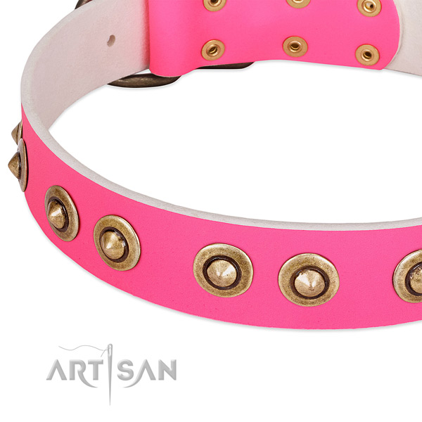 Strong decorations on natural genuine leather dog collar for your four-legged friend