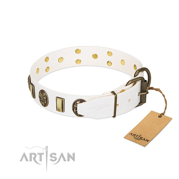 Corrosion proof hardware on leather collar for fancy walking your doggie