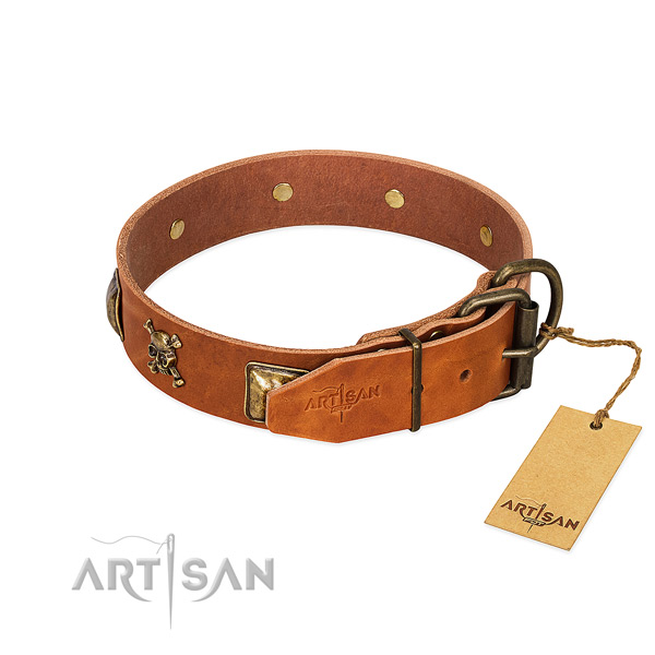 Impressive genuine leather dog collar with rust resistant decorations