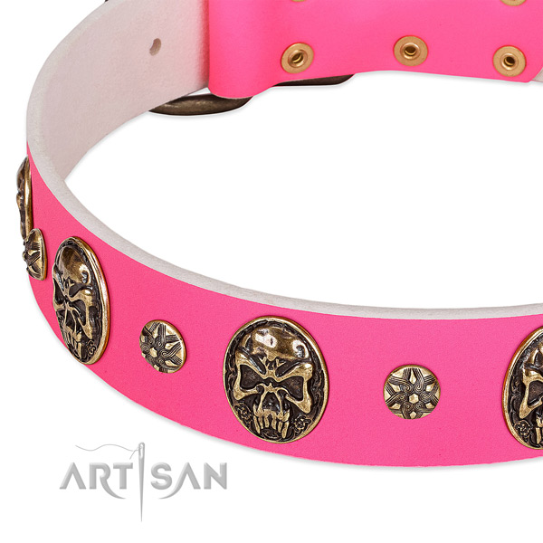 Decorated dog collar handmade for your attractive pet