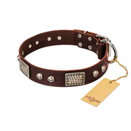 """Pirate Skull"" FDT Artisan Brown Leather Siberian Husky Collar with Old Silver Look Plates and Skulls"
