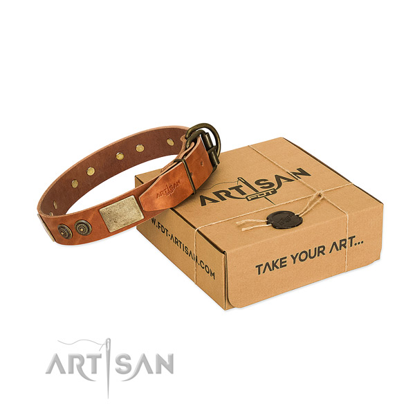 Reliable buckle on full grain natural leather dog collar for everyday use