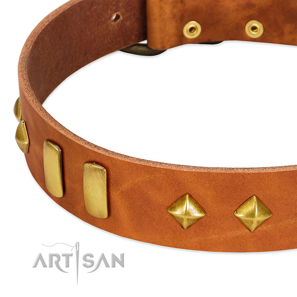 Comfortable wearing leather dog collar with stylish design adornments