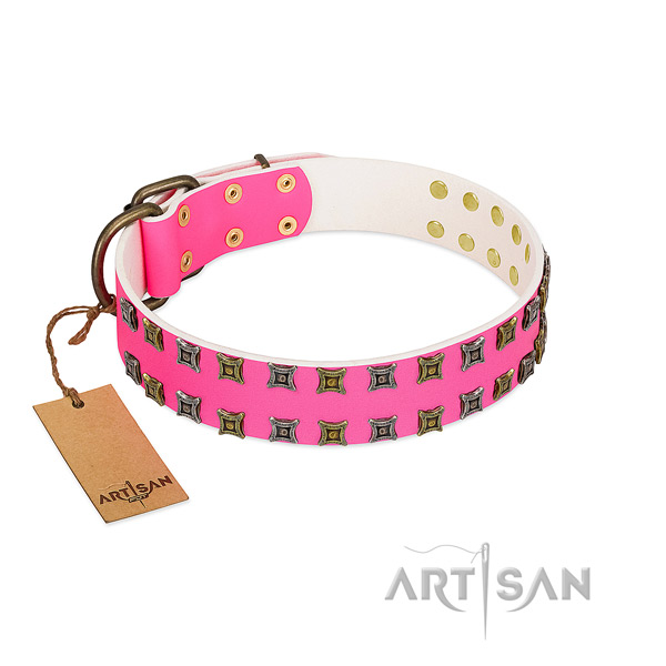 Full grain genuine leather collar with incredible studs for your four-legged friend