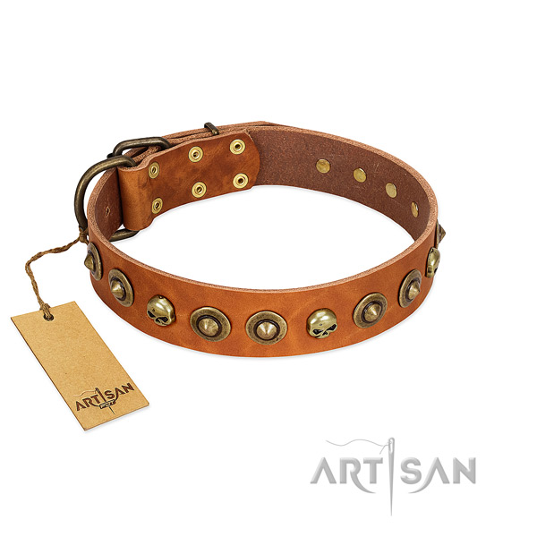 Natural leather collar with inimitable decorations for your dog