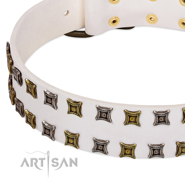 Genuine leather dog collar with embellishments for your lovely dog