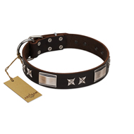 """Satin Beauts"" FDT Artisan Brown Leather Siberian Husky Collar with Stars and Plates"
