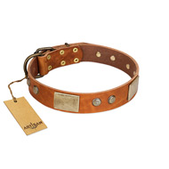 """Ancient Treasures"" FDT Artisan Tan Leather Siberian Husky Collar with Antiqued Plates and Studs"