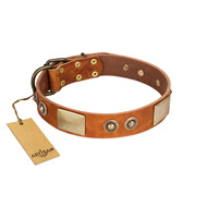 """Perfect Blend"" FDT Artisan Tan Leather Siberian Husky Collar 1 1/2 inch (40 mm) wide"