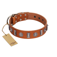 """Luxurious Necklace"" FDT Artisan Tan Leather Siberian Husky Collar with Silver-Like Adornments"