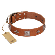 """Lucky Star"" FDT Artisan Tan Leather Siberian Husky Collar with Silver-Like Embellishments"