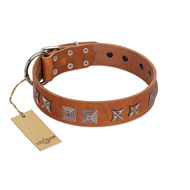 """Antique Figures"" FDT Artisan Tan Leather Siberian Husky Collar with Silver-like Engraved Plates"
