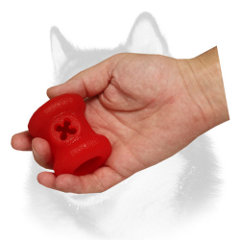 Foam treat holder for Siberian Husky playing