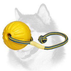 Lightweight foam ball for Siberian Husky