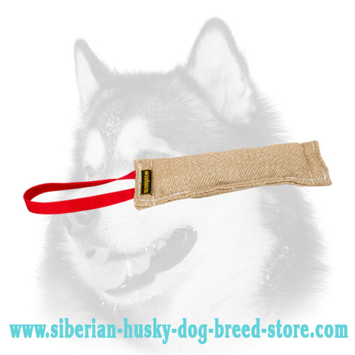 Jute puppy bite tug for Siberian Husky