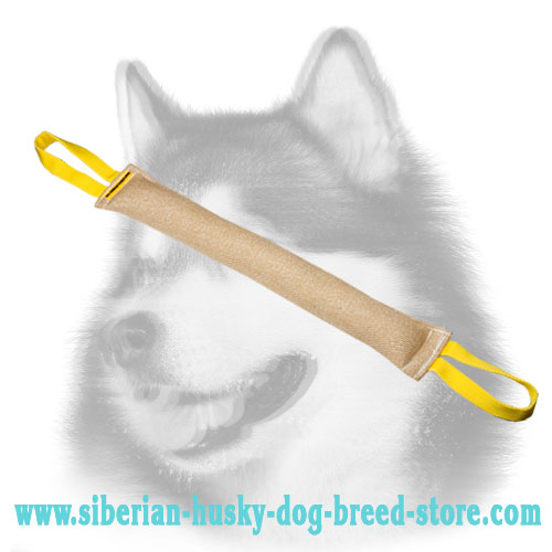Jute bite tug for Siberian Husky grip developing
